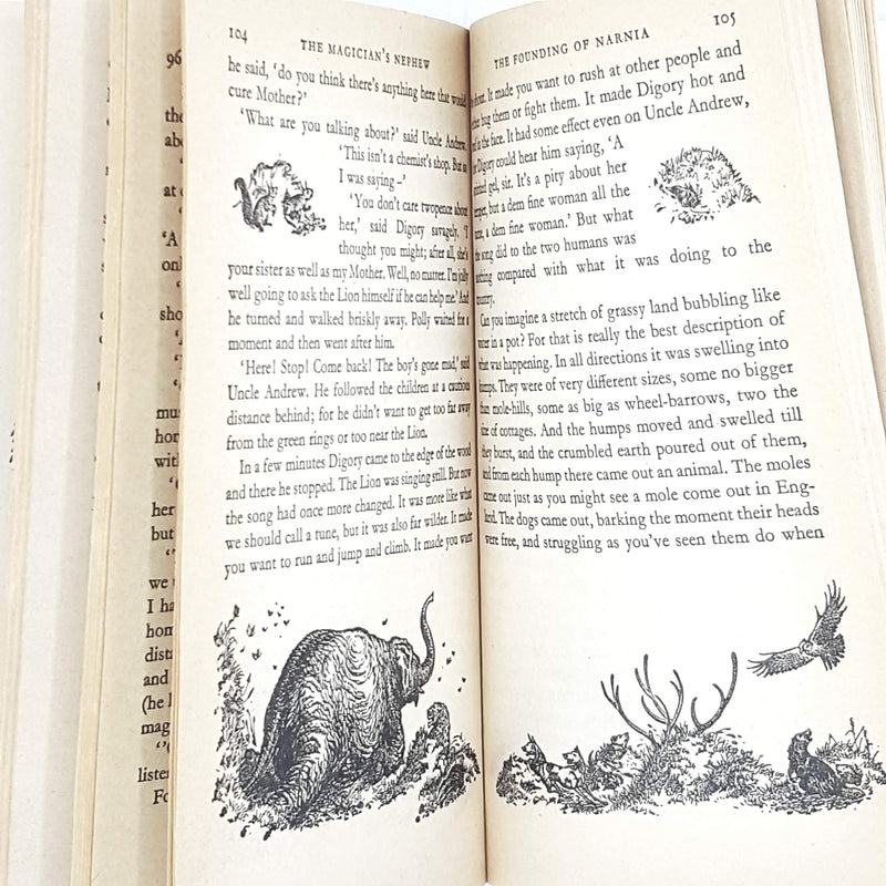 Illustrated First Edition C. S. Lewis's The Magician's Nephew 1980