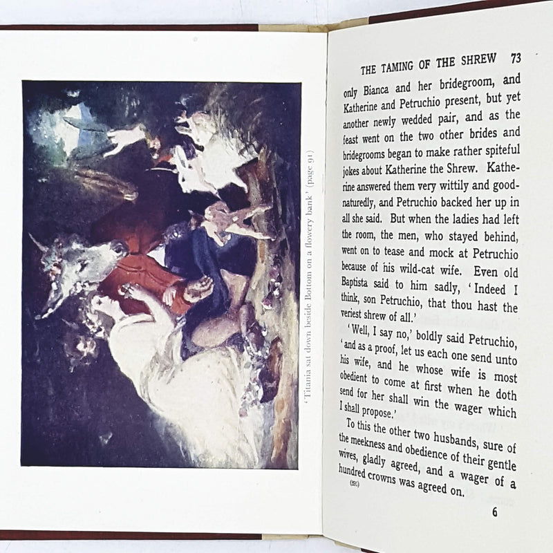 Illustrated William Shakespeare's Stories Told to The Children