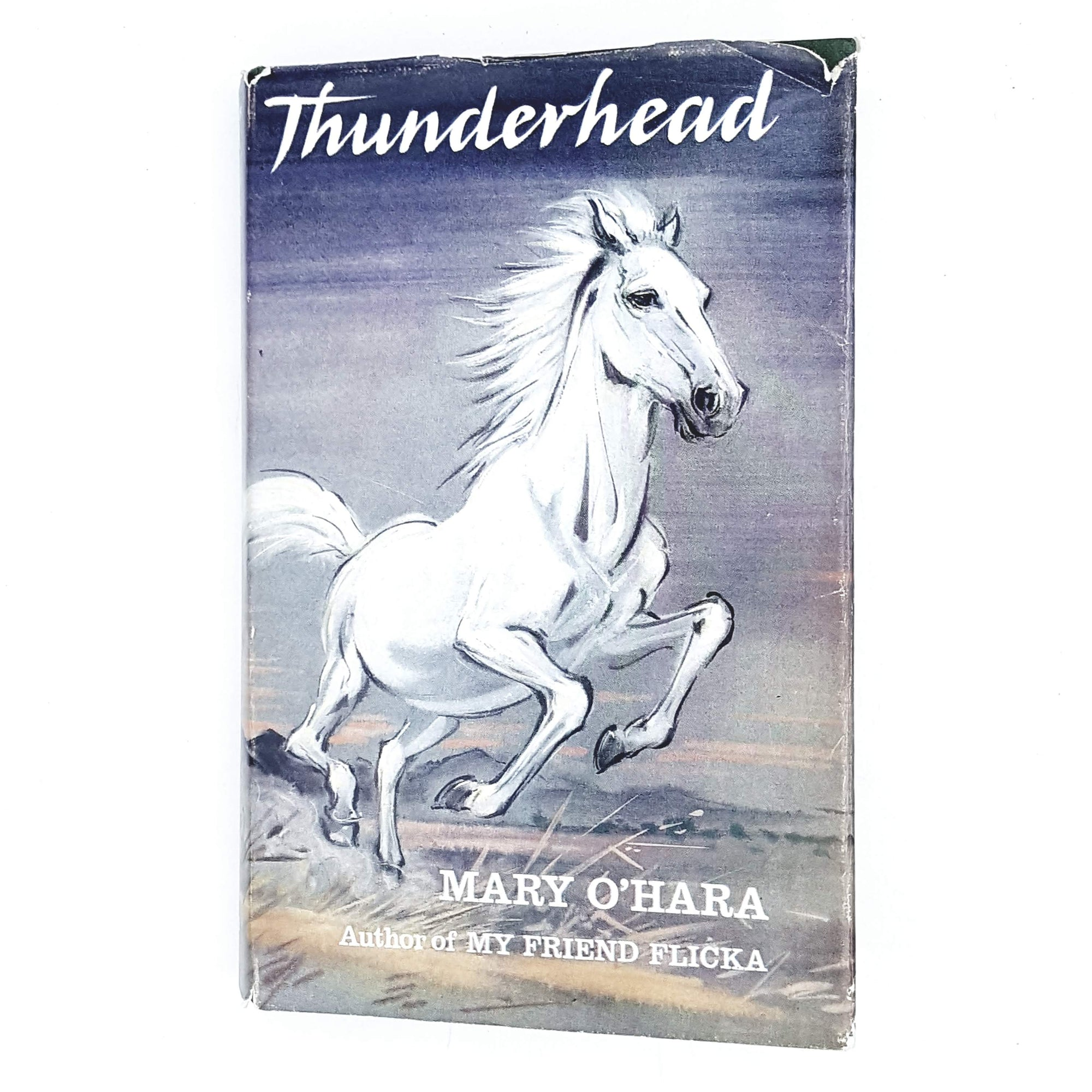 horse-mary-ohara-vintage-book-blue