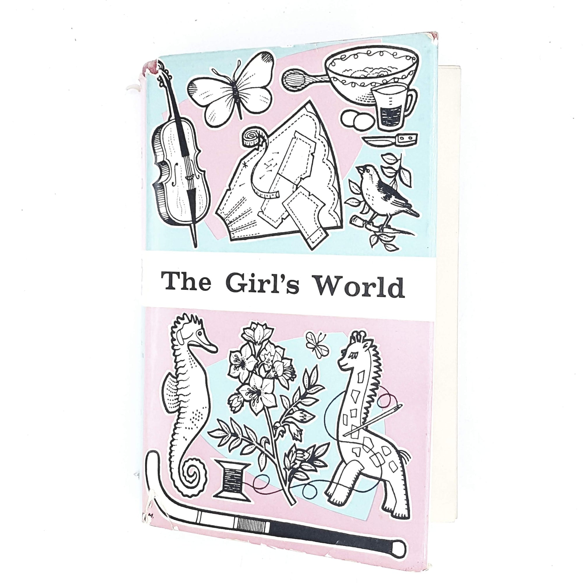 girls-world-blue-pink-pastel-vintage-book