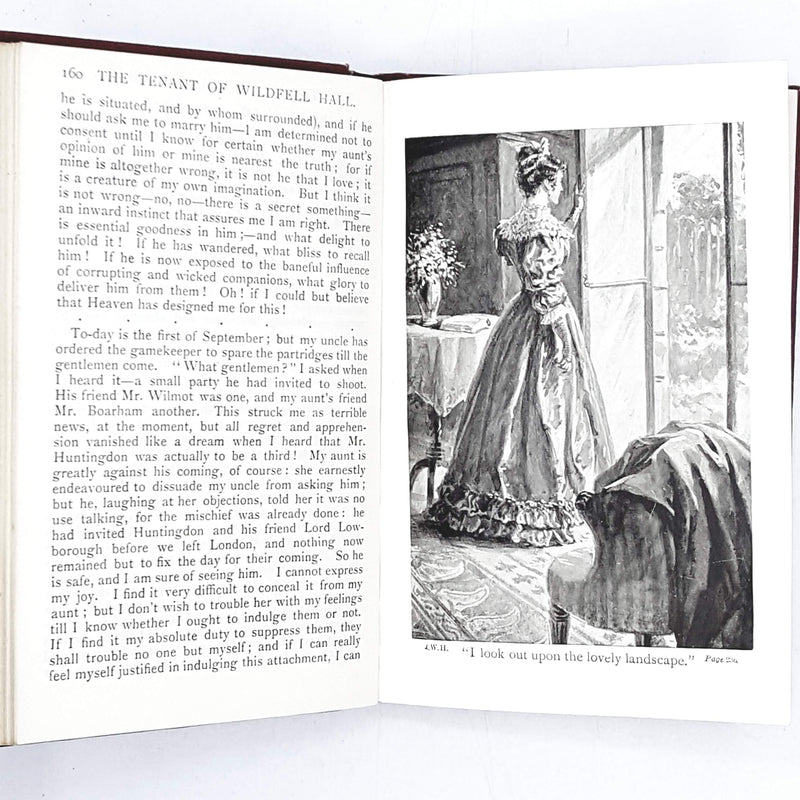 anne-bronte-red-tenant-wildfell-hall-vintage-book-country-house-library