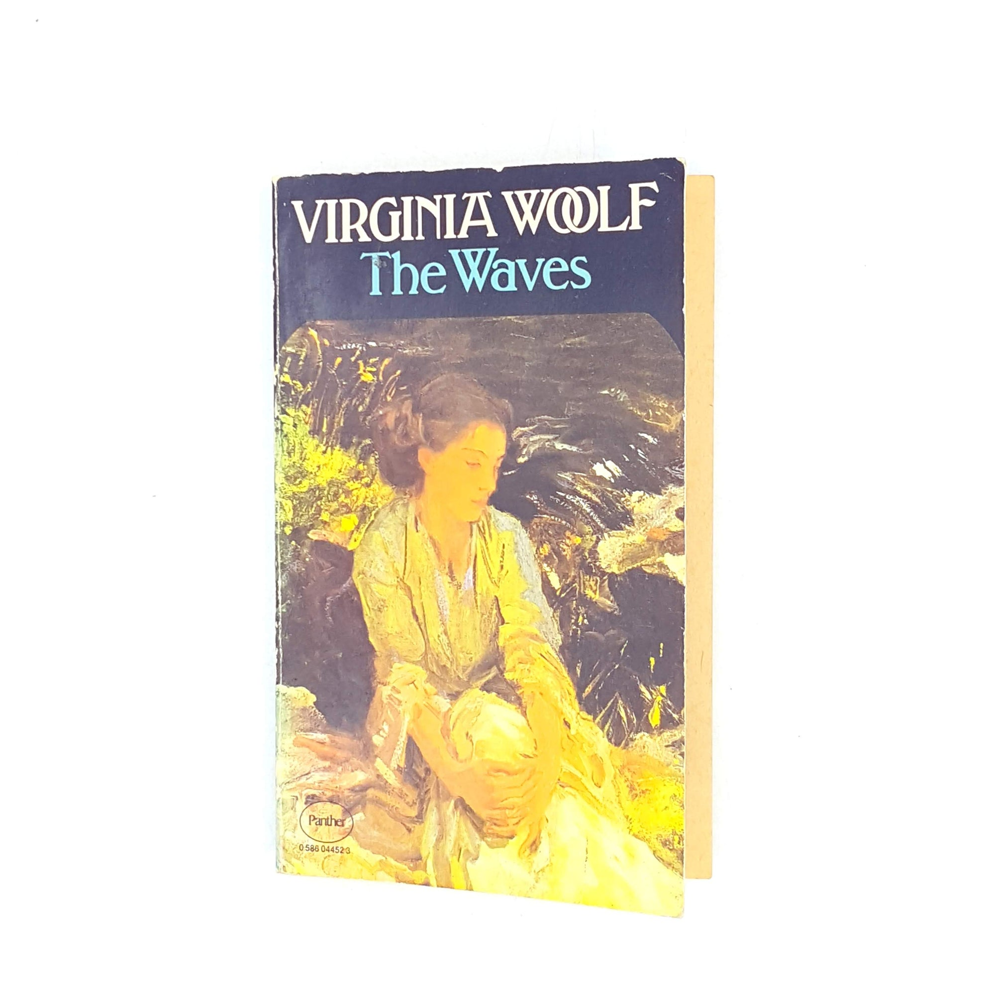 antique-decorative-thrift-the-waves-classics-country-house-library-books-virginia-woolf-vintage-panther-black-old-1979-