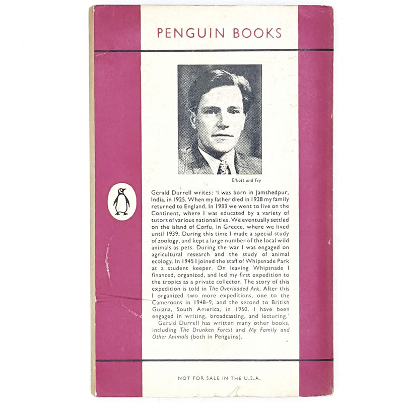 Vintage Penguin The Bafut Beagles by Gerald Durrell 1959 - 1961