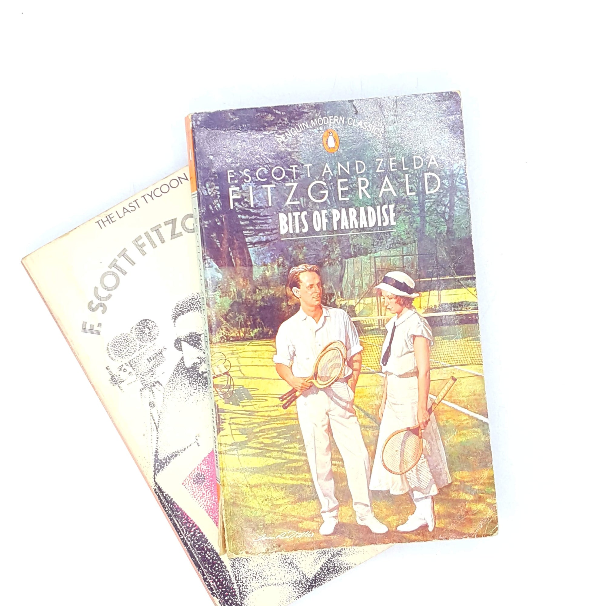 F. Scott Fitzgerald Double Collection