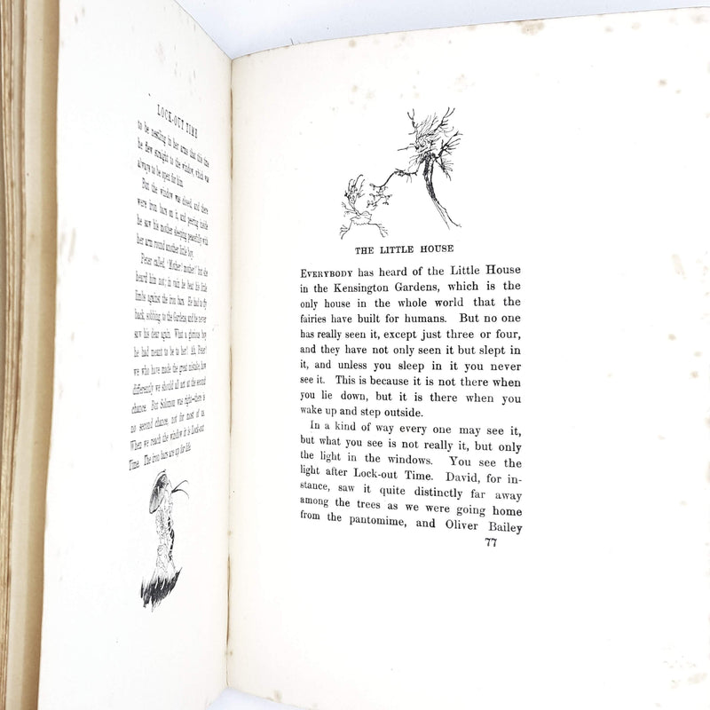 Illustrated Peter Pan in Kensington Gardens from the Little White Bird by J. M. Barrie