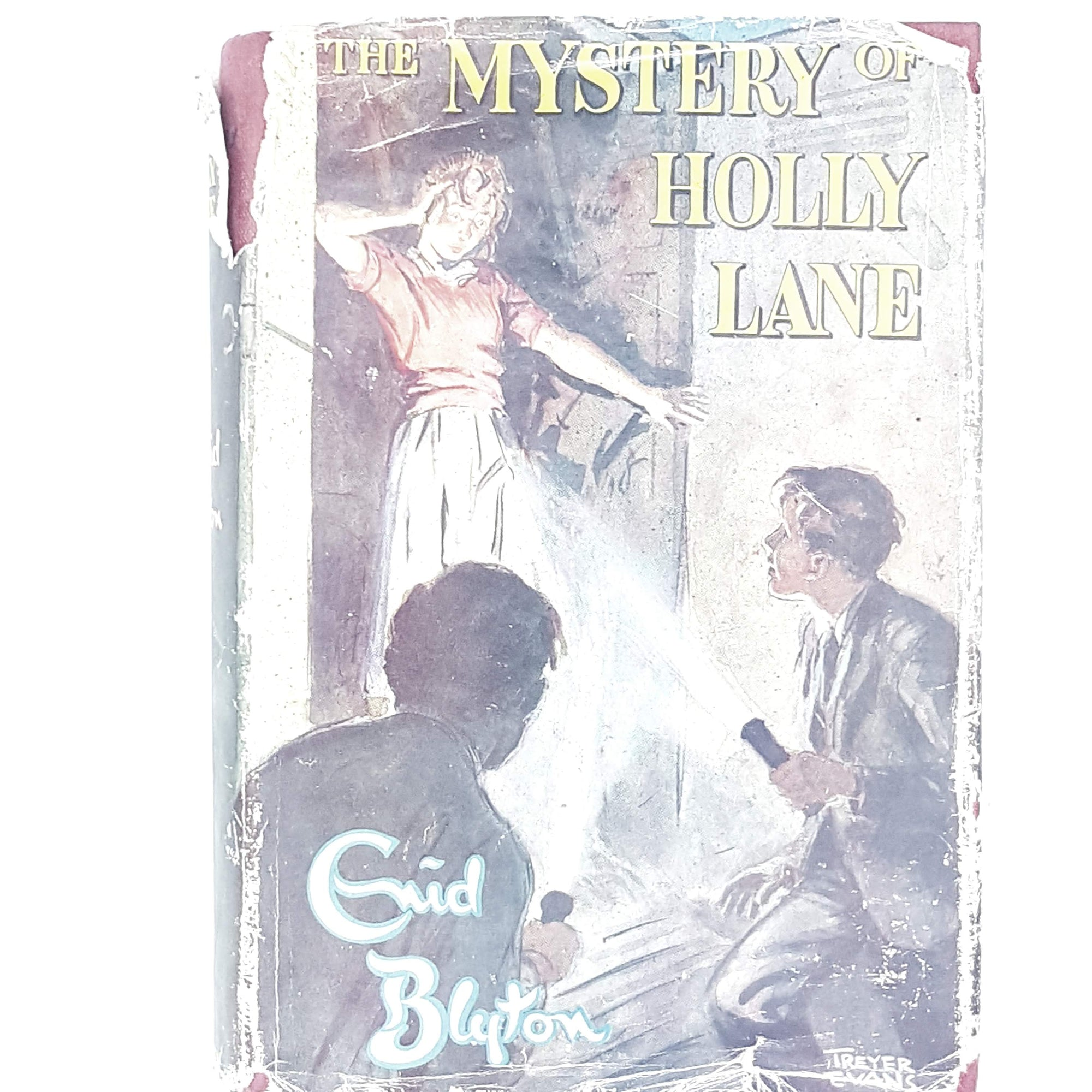 enid-blyton-mystery-holly-lane-vintage-country-house-library