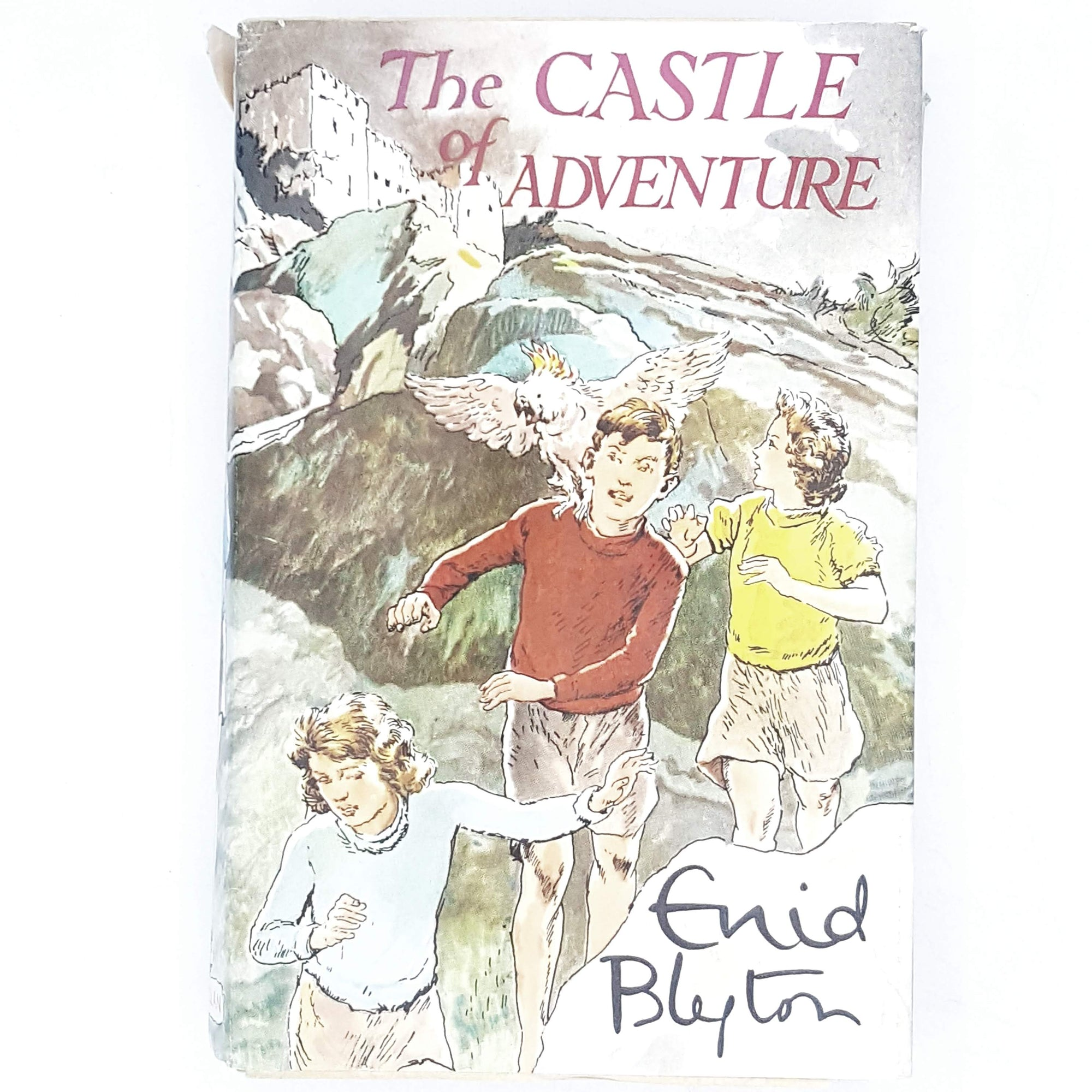 enid-blyton-castle-adventure-vintage-country-house-library