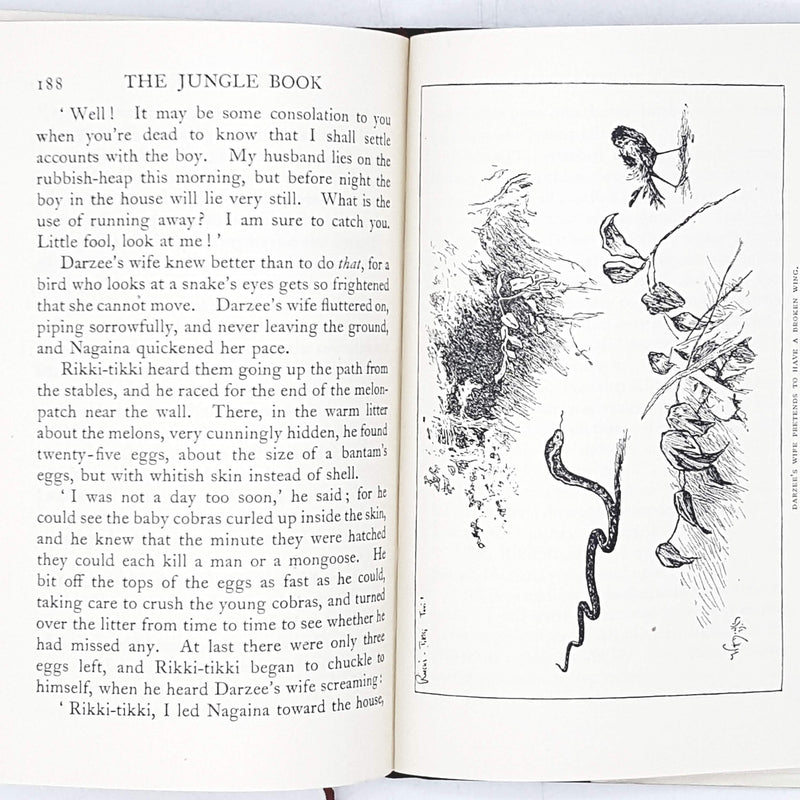 Rudyard Kipling's The Jungle Book 1935