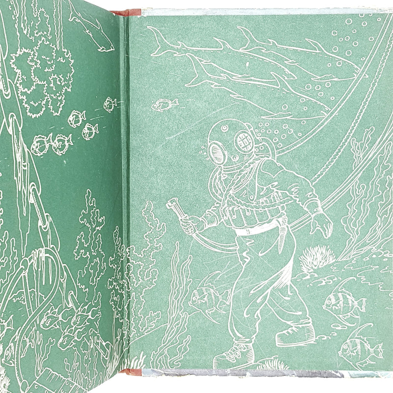 Illustrated King Arthur and his Knights
