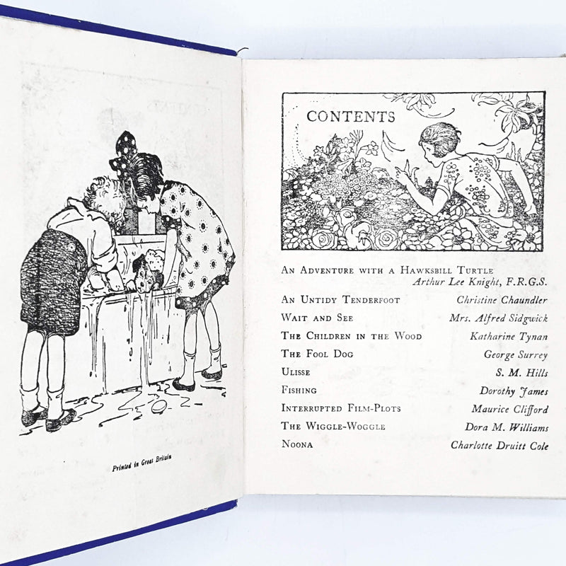 Illustrated Boys' and Girls' Story Book