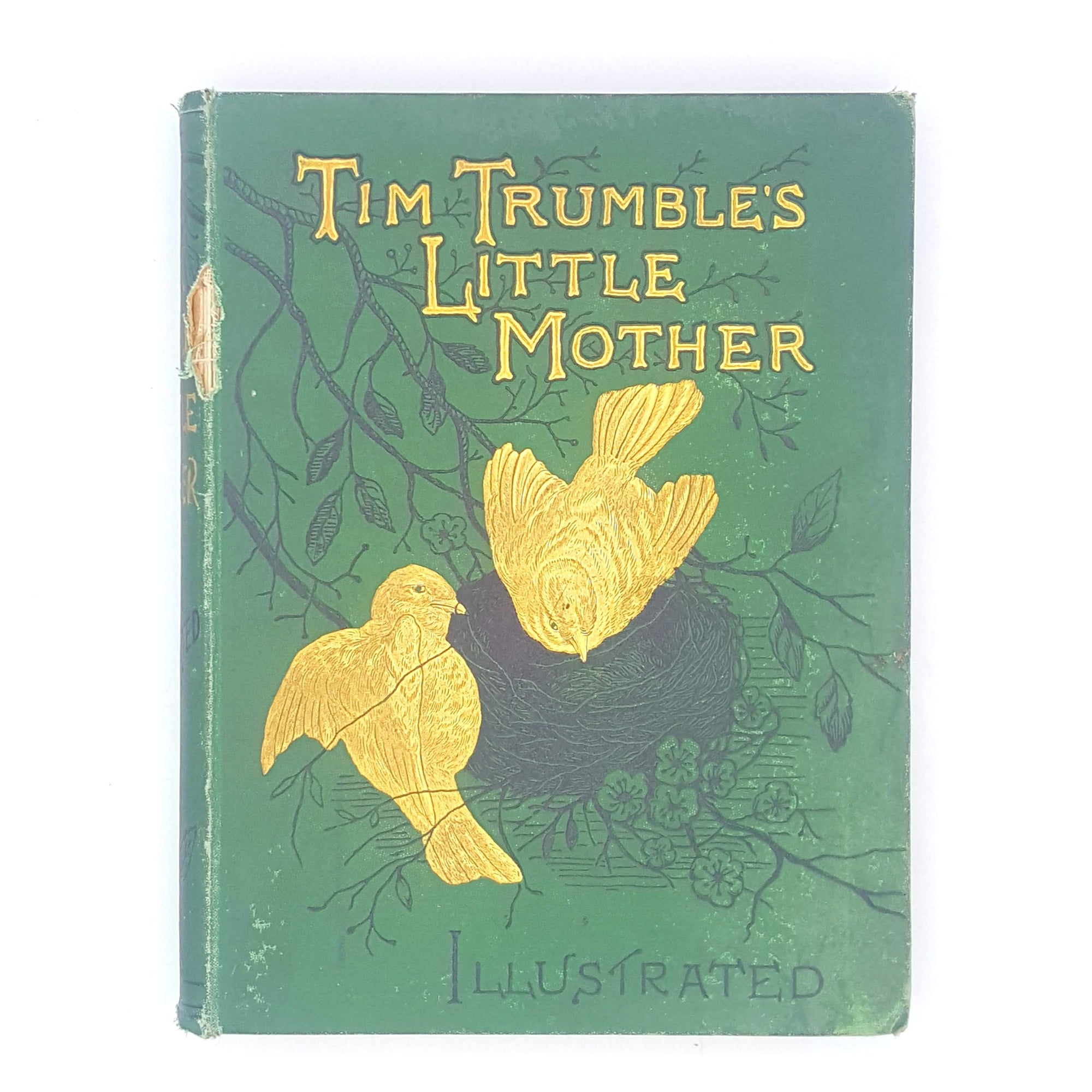 Tim Trumble's Little Mother by C. L. Mateaux