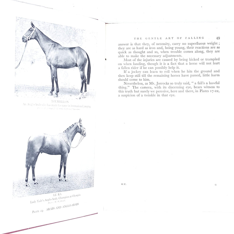 blue-horse-vintage-sport-book-country-library-book
