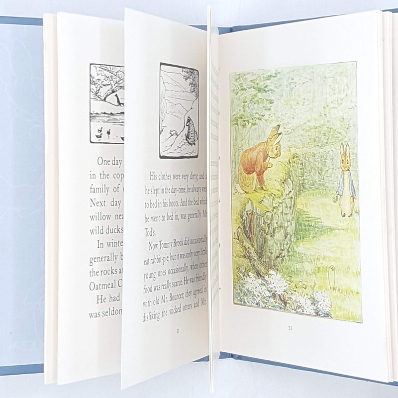 blue-mr-tod-beatrix-potter-illustrated-vintage-book-country-house-library