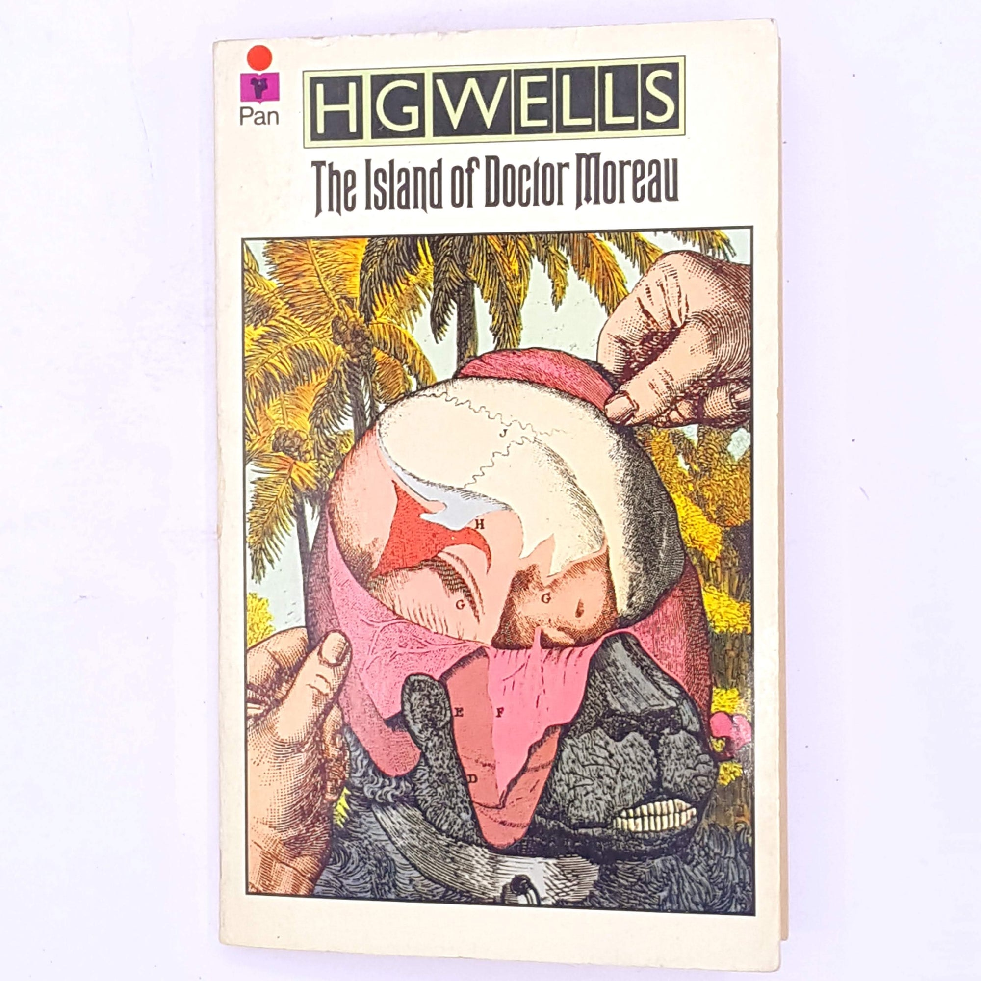 old-horror-books-vintage-classic-thriller-patterned-science-fictions-H.G.-Wells-The-Island-Of-Doctor-Moreau-decorative-thrift-antique-country-house-library-