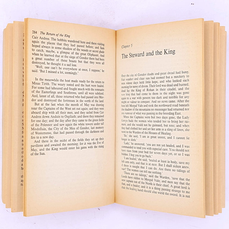 classic-patterned-the-lord-of-the-rings-the-return-of-the-king-final-Tolkien-trilogy-antique-fantasy-dwarves-elves-hobbits-baggins-smaug-gandalf-the-grey-wizard-vintage-j.r.r.-tolkien-country-house-library-books-thrift-mystery-adventure-science-fiction-decorative-old-