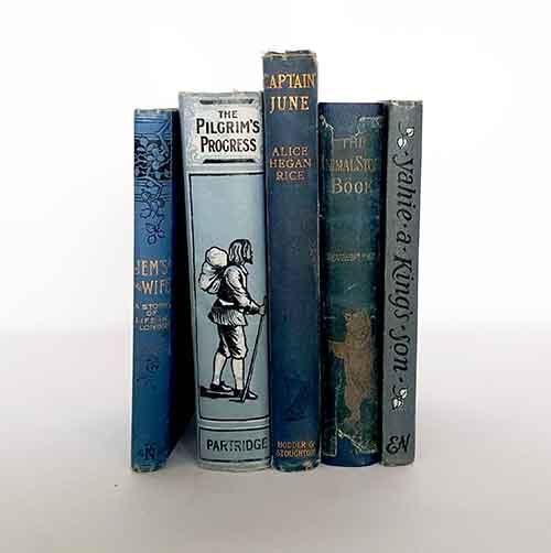 country-house-library-old-vintage-thrift-books-books-by-the-foot-blue