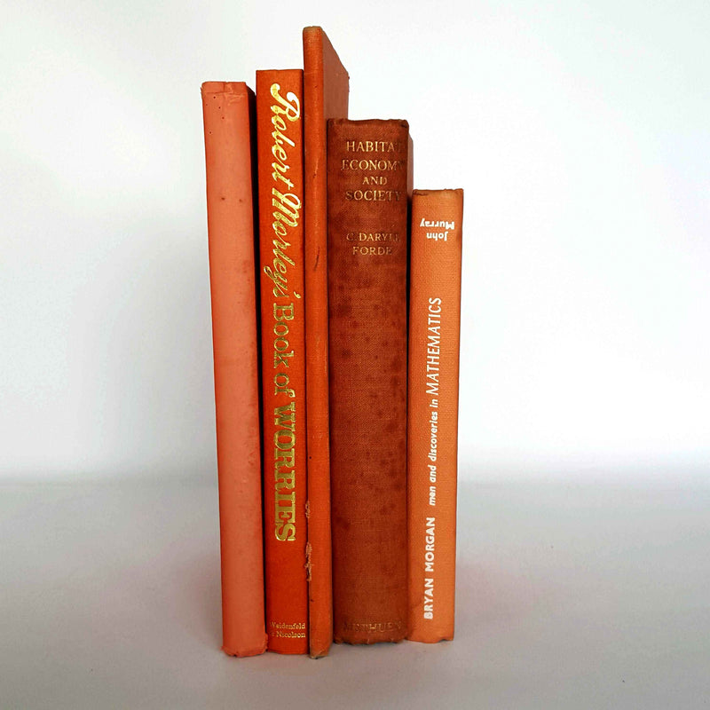 country-house-library-orange-vintage-book-collection-antique