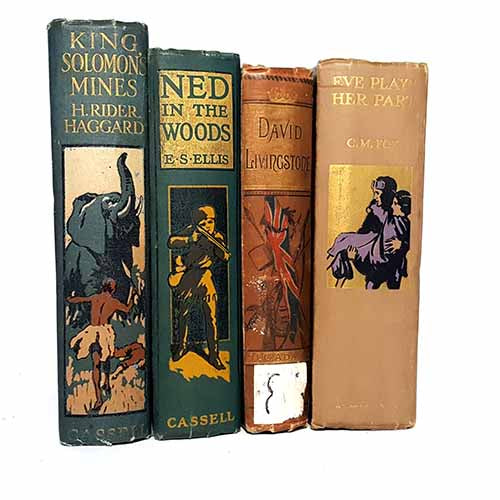 Multi-Coloured Vintage Four Book Collection