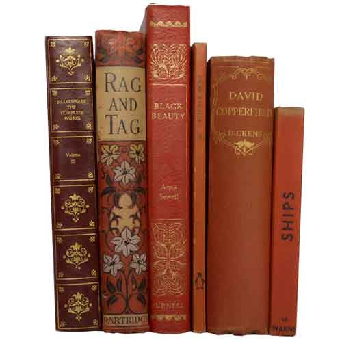 Red Vintage Book Collection