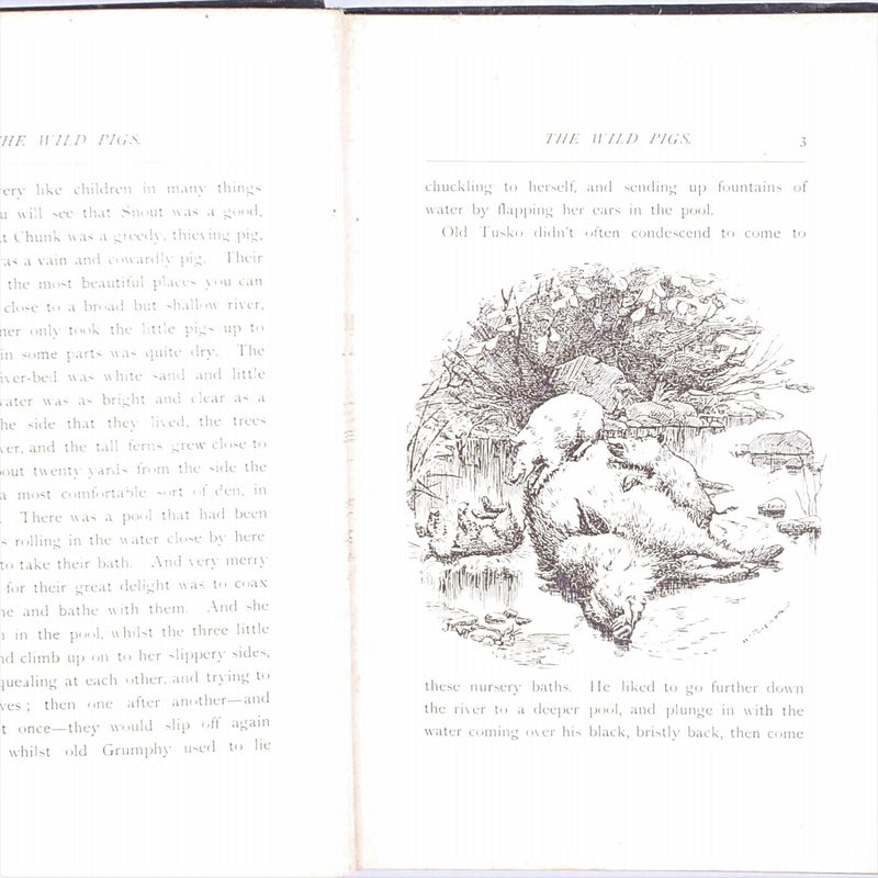 w-parkinson-macmillan-gerald-young-vintage-green-patterned-country-ouse-library-antique-classic-decorative-thrift-illustrated-the-wild-pigs-old-1899-swan-sonnenschein-books-