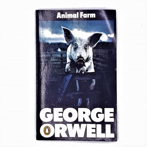 george-orwell-vintage-classic-decorative-country-house-library