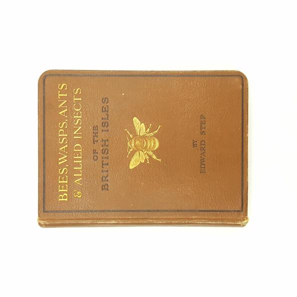 Bees, Wasps, Ants & Allied Insects of the British Isles 1932 Country House Library