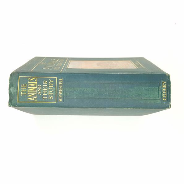 The Animals and their Story 1909 Country House Library