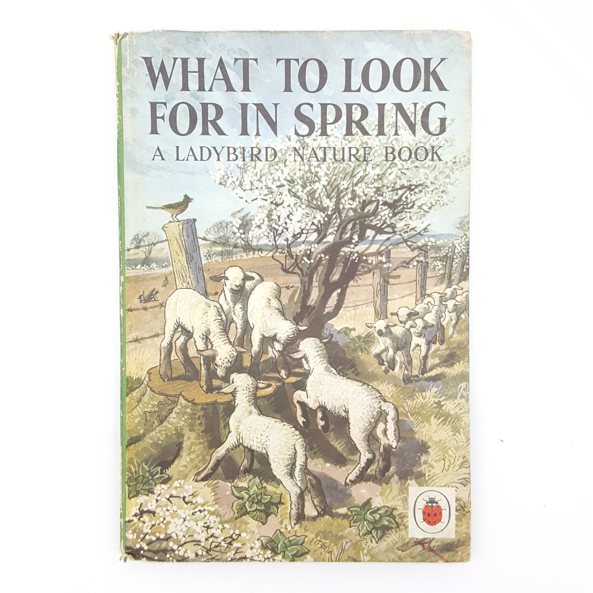 What To Look For In Spring 1961 Country House Library