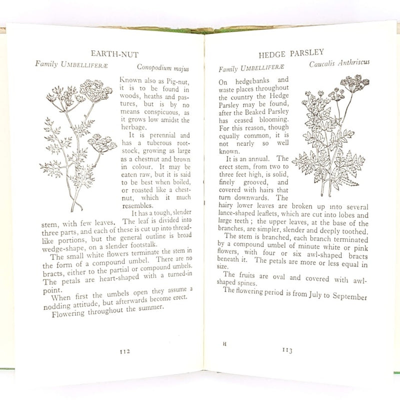 thrift-classic-decorative-wild-flowers-books-country-house-library-antique-british-patterned-wild-flowers-observer-vintage-hardcover-old-
