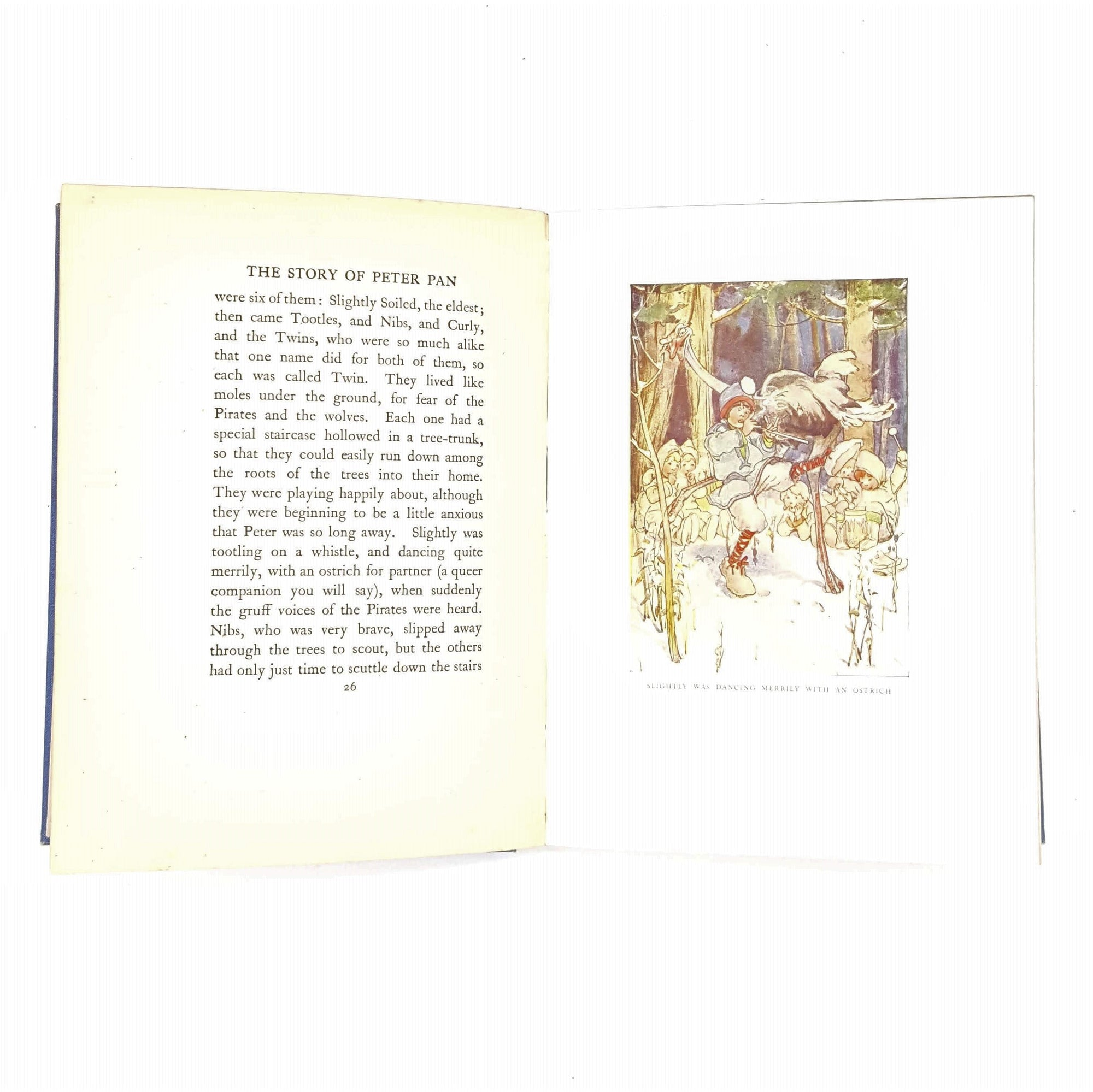 the-peter-pan-picture-book