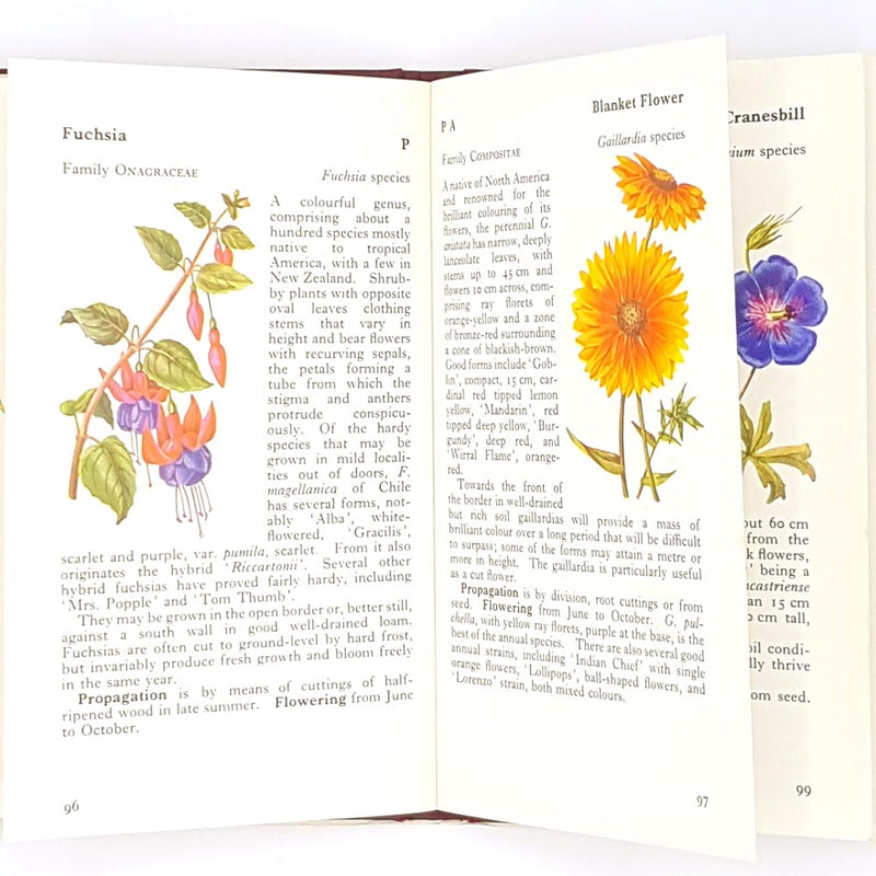 observer-patterned-garden-old-thrift-country-house-library-hardcover-books-1974-flowers-decorative-classic-vintage-antique-