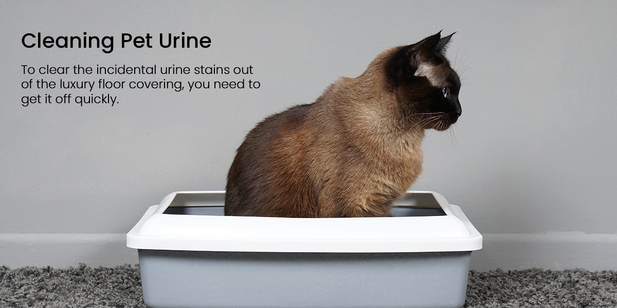 Cleaning Pet Urine