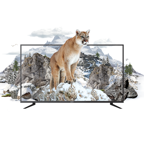 Cougar 32 HD Black price in Pakistan