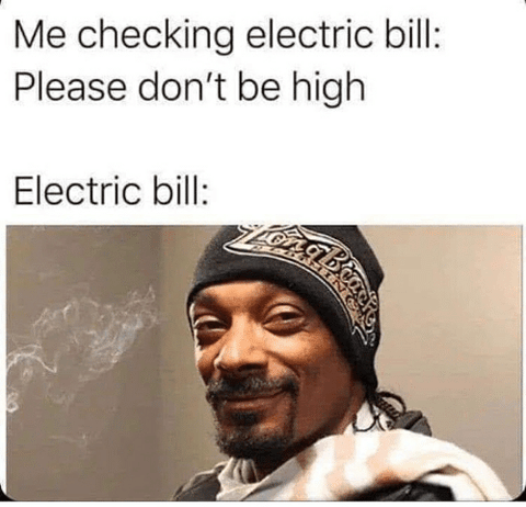 checking electricity bill