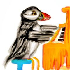 Puffin Playing Piano