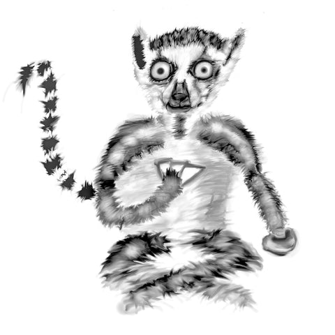 Ring tailed lemur with cards