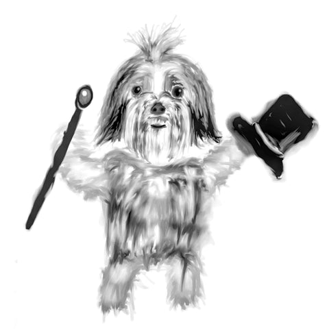 Shih tzu top hat and cane