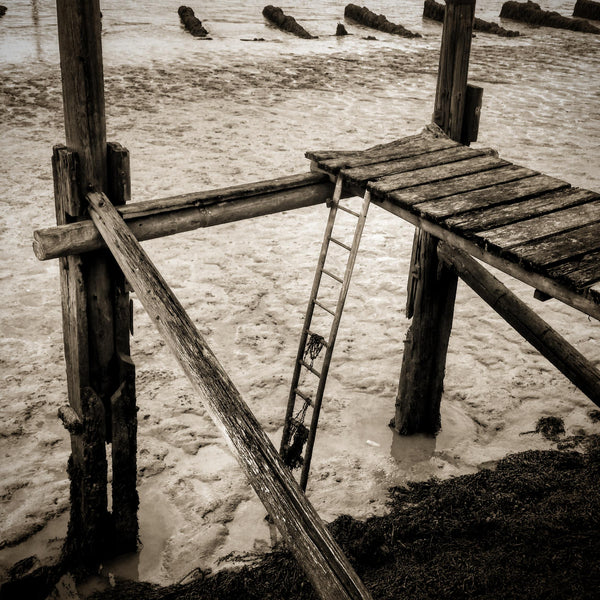 Ladder and jetty