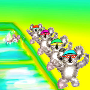 Koalas synchronised swimming