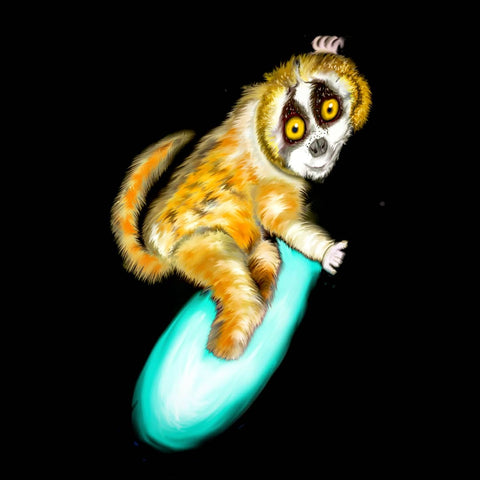 Greater slow loris surfing