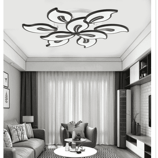 Modern Design Ceiling Light
