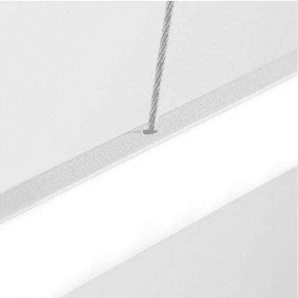 Modern Oval Ceiling Light