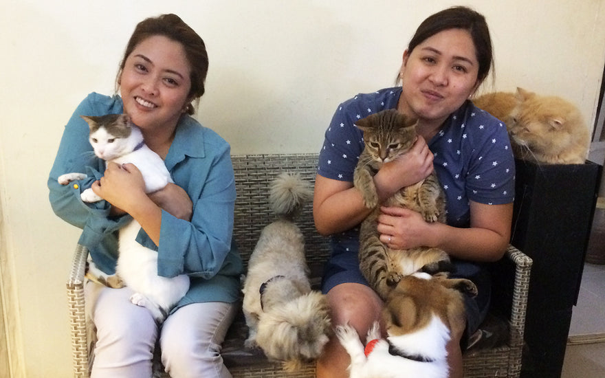 The hero cousins who live with their 24 rescue animals
