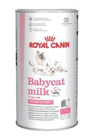 Royal Canin Babycat Milk - My Cat and Co.