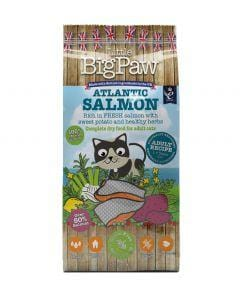 LITTLE BIG PAW Atlantic Salmon for Adult Cats 1.5kg - My Cat and Co.