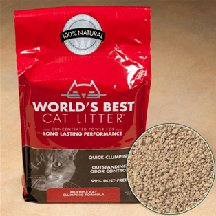 World's Best Cat Litter Extra Strength - My Cat and Co.