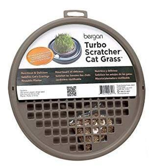 The Turbo Cat Grass - My Cat and Co.