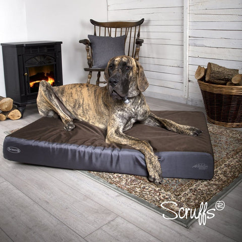 SCRUFFS ArmourDillo Robust Dog Bed - My Pooch and Co.