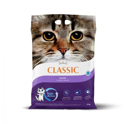 INTERSAND Classic Lavender 14kg - My Cat and Co.