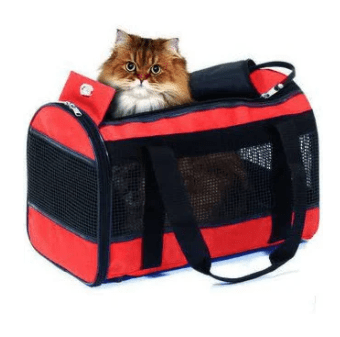 KARLIE Divina Travel Bag (black) 50X28X30cm - My Cat and Co.